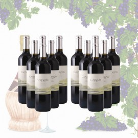 12 Bottles of Capewood Merlot 2011